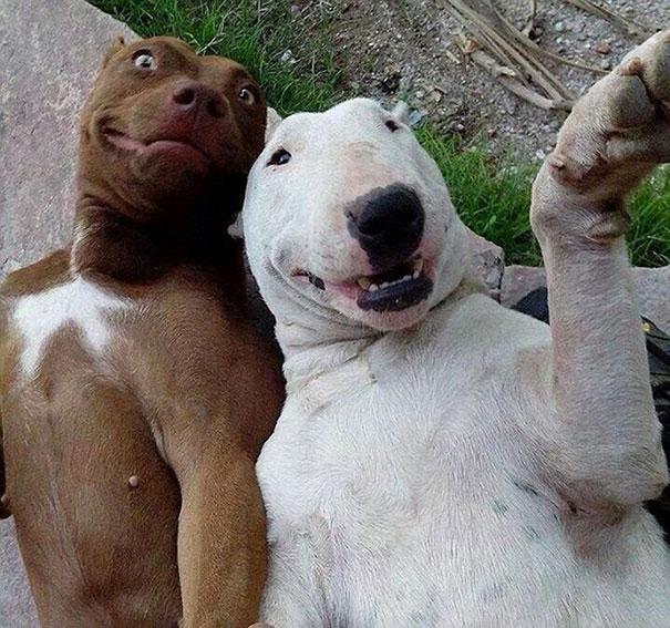 BFF Selfie Time