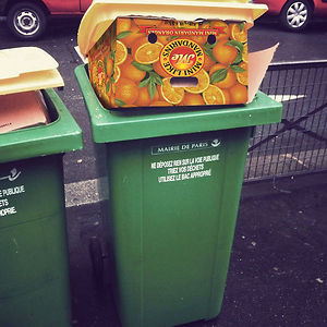 Donald The Bin