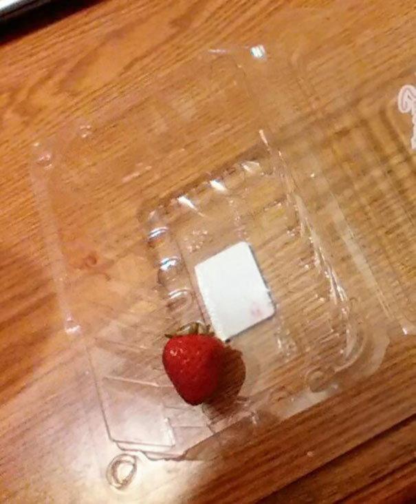 I Asked The Kids Not To Eat All Of The Strawberries... Hey, At Least They Listen!