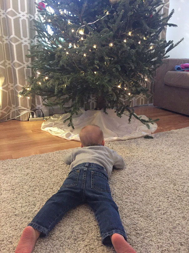 This Is What Happened When I Asked The 1Yo To Get In Front Of The Tree So I Could Take A Picture. Should've Been More Specific I Guess