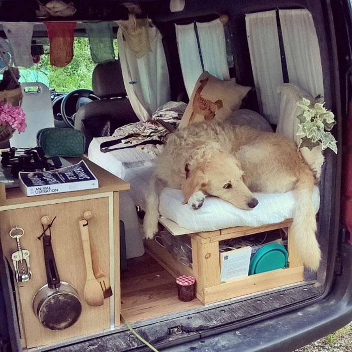 girl-restores-van-travels-with-dog-marina-piro-16