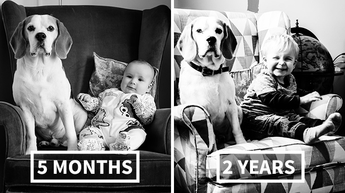 I've Taken A Picture Of My Son And Beagle Every Month For The Last Two Years In The Same Chair