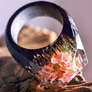 Tiny Worlds Inside Wooden Rings