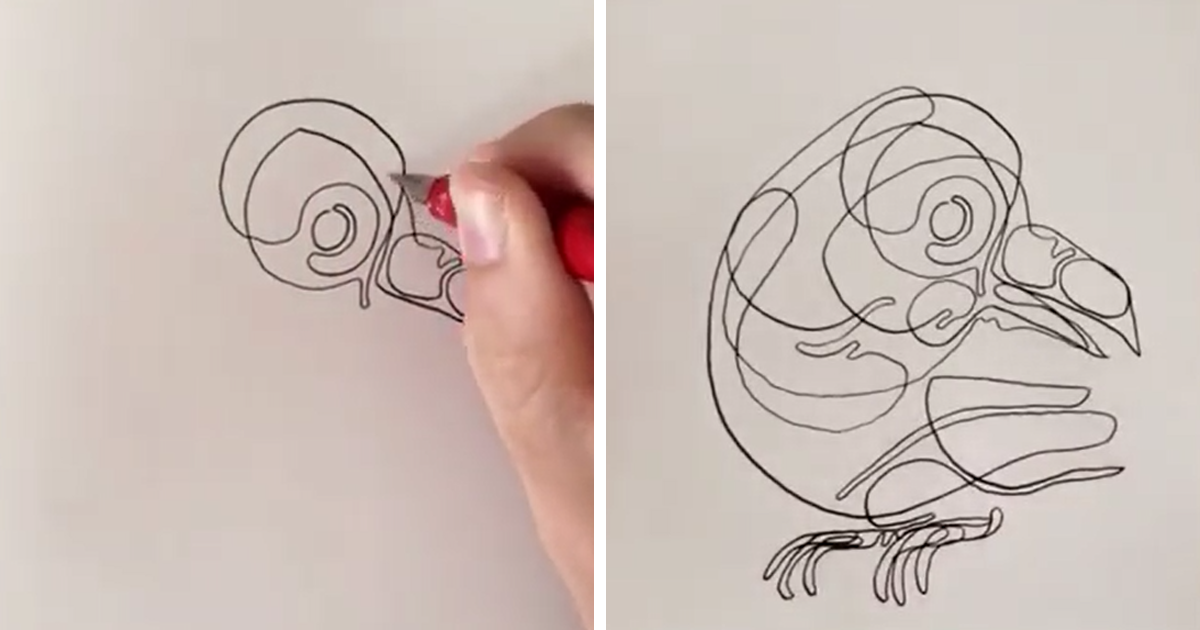 Continuous Line Drawing Face : Stroke drawings by will scobie bored panda