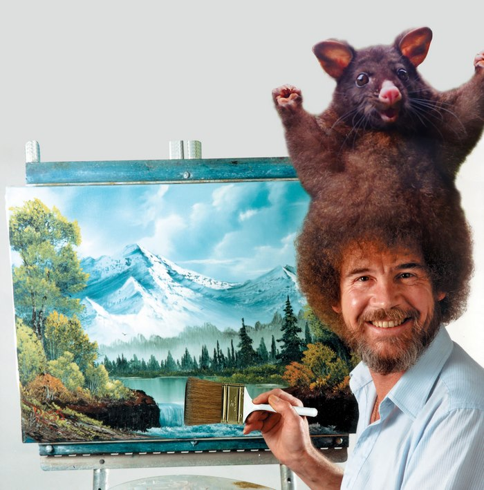 Bob Ross And Opossum Hair