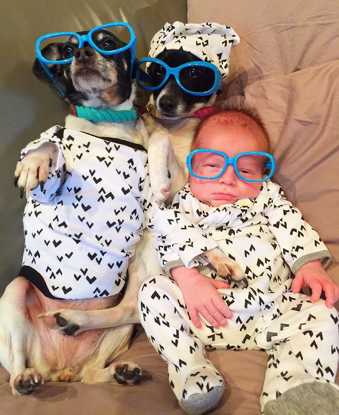 pets-family-friend-newborn-baby-sonny-13