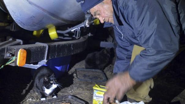 scrap-metal-collector-feeds-cats-willie-ortiz-3
