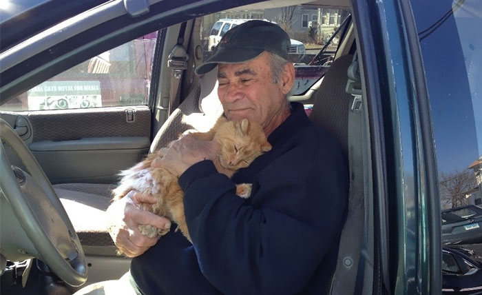 For 22 Years, This Scrap Metal Worker Has Been Feeding Neighboring Cats, Never Missed A Day