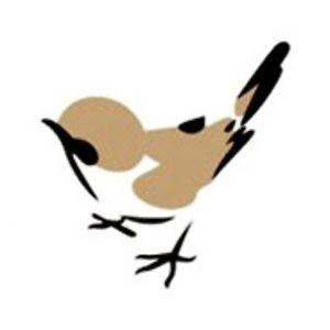 Sidewalk Songbird