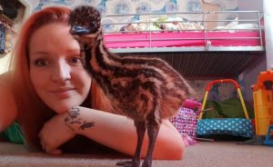 This Woman Bought An Egg On eBay For $30, Now She Has An Exotic Bird