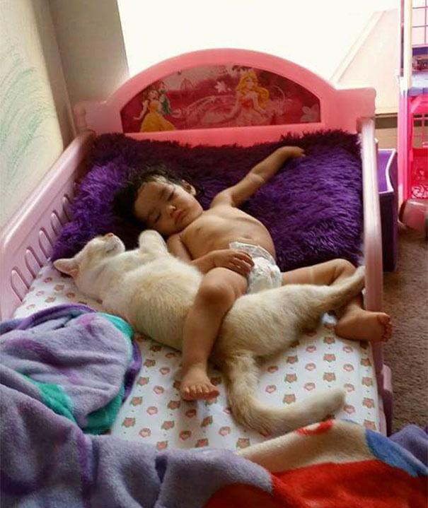 tiny-kitten-baby-girl-best-friends-2