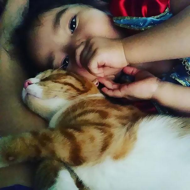 tiny-kitten-baby-girl-best-friends-6