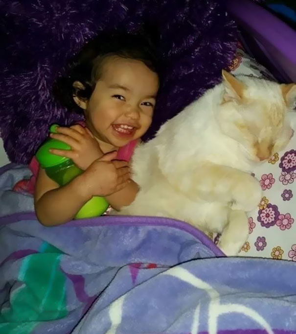 tiny-kitten-baby-girl-best-friends-7