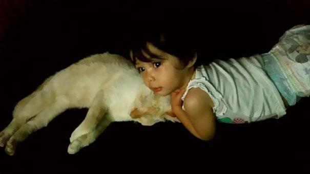 tiny-kitten-baby-girl-best-friends-8a