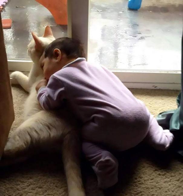 tiny-kitten-baby-girl-best-friends-9a