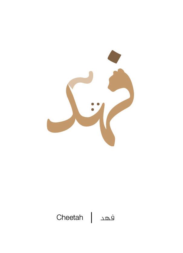 Cheetah - Fahd
