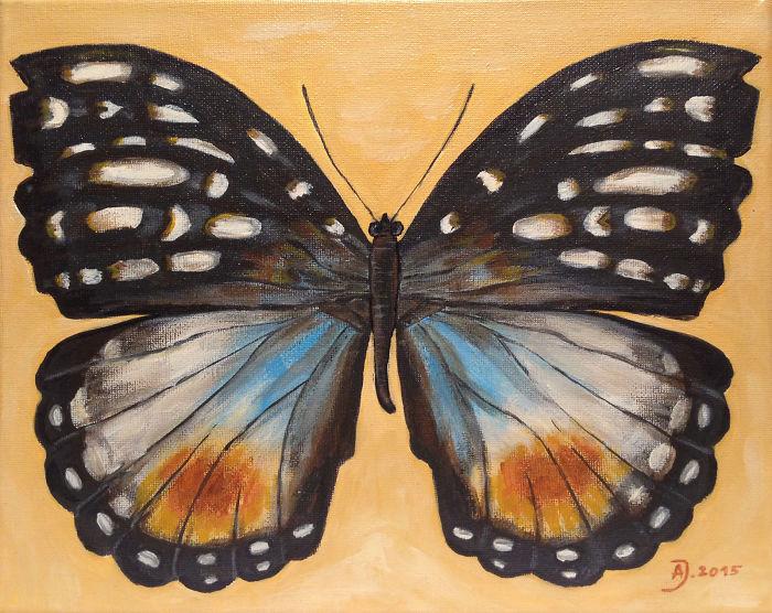 Butterflies Flew. Spring Is Coming?
