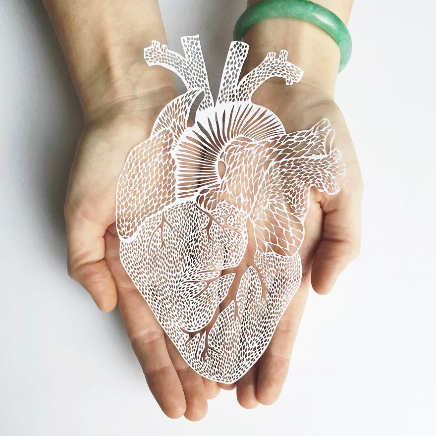 I Hand-Cut Anatomical Organs Out Of Paper | Bored Panda