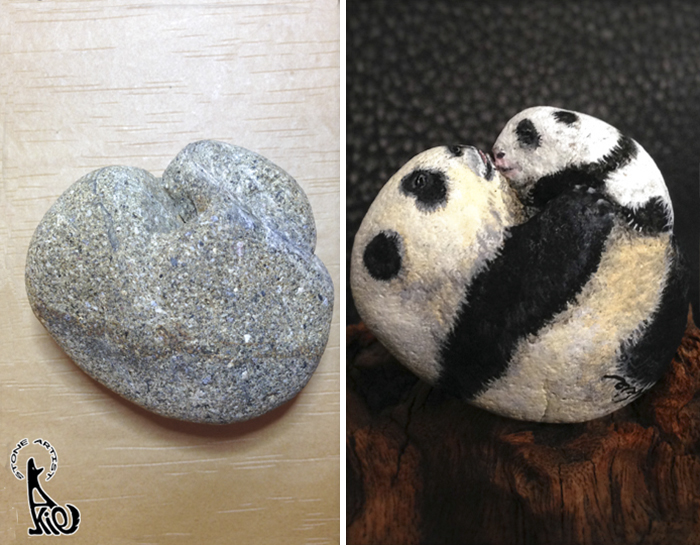 Panda Before & After