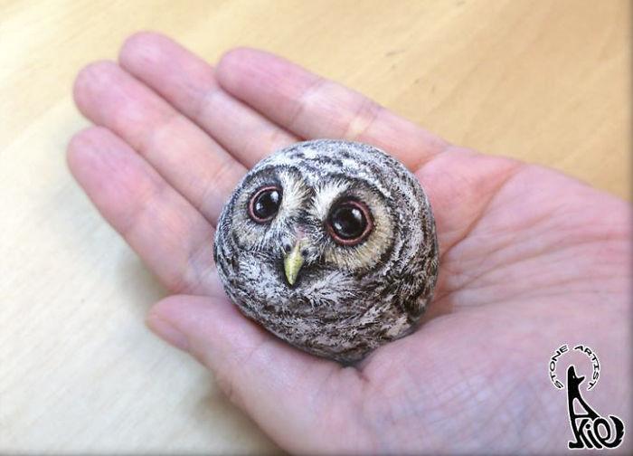 Owl Chick