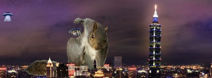 Super Hero Squirrel Protecting Us From Ufo's Attack
