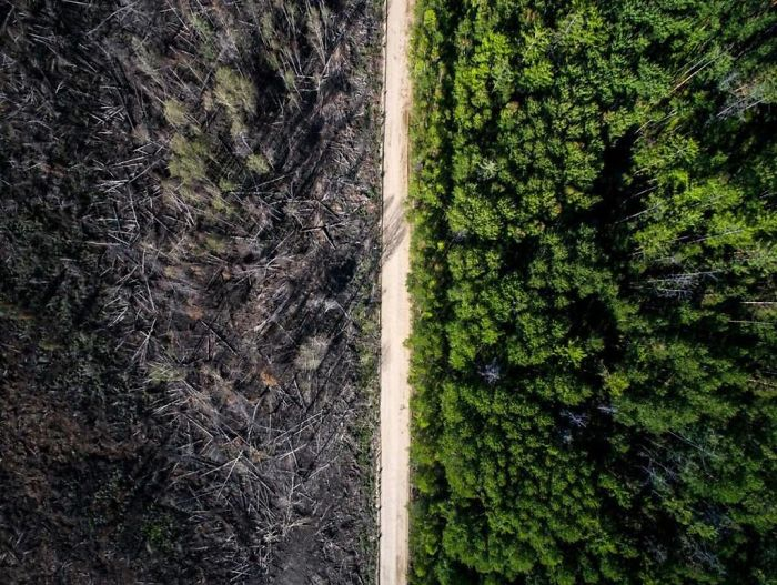 The Road That Stopped The Fire