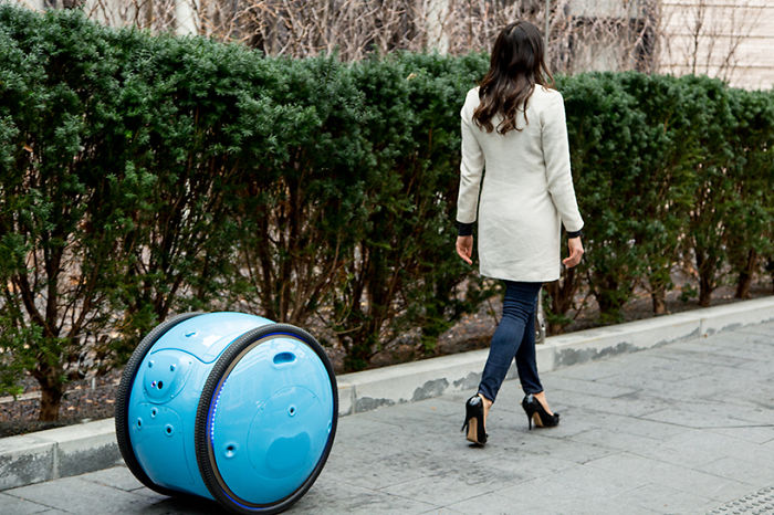 This Robot Follows You Around Carrying All Your Stuff