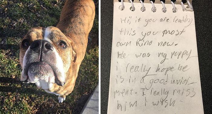 This Dog Was Returned To Shelter, But It Had This Letter