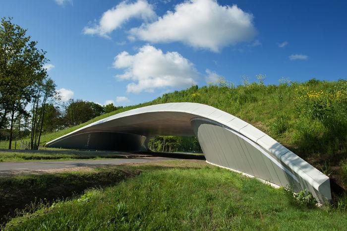 Ecoducto en Overijssel, Holanda