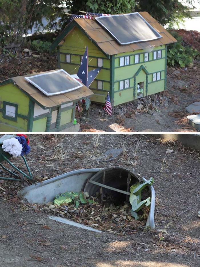 Túnel para sapos en California