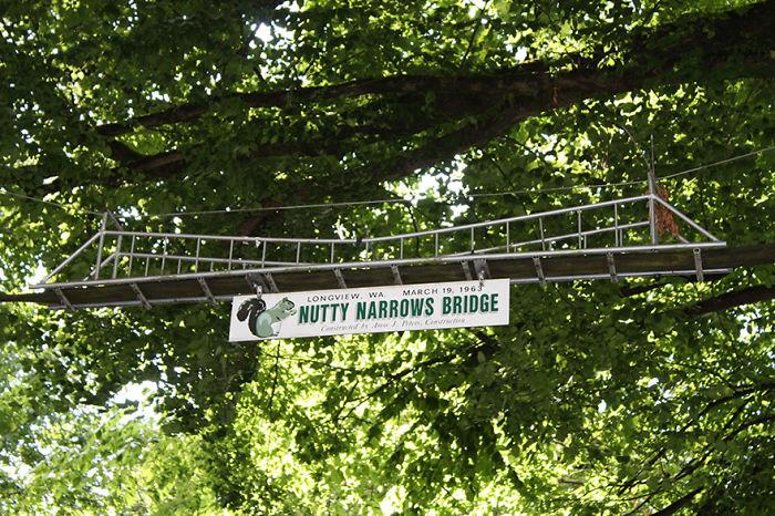 Puente para ardillas en Washington