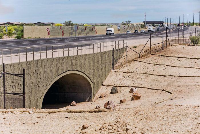 Paso subterráneo para animales en Arizona