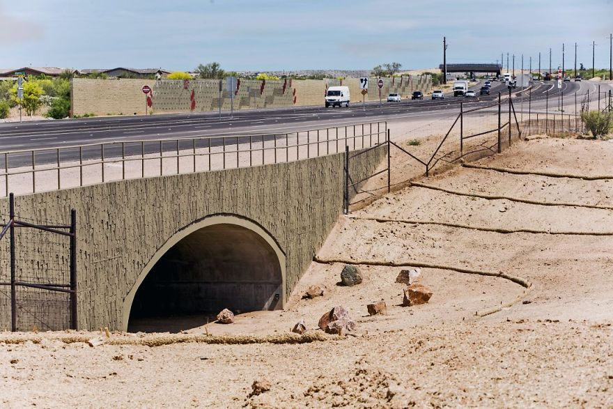 Animal Underpass Near Catalina, Arizona