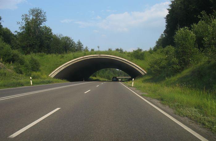 Ecoducto en Böblingen, Alemania