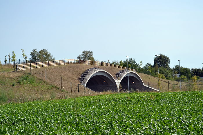 Ecoducto cerca de Praga