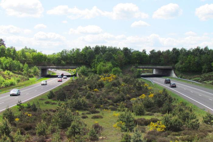 Ecoducto 'Harm Van De Veen' en Holanda