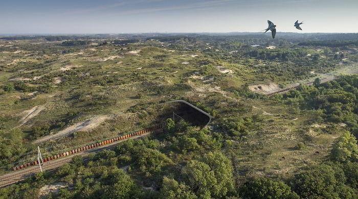 Ecoducto Duinpoort, Holanda