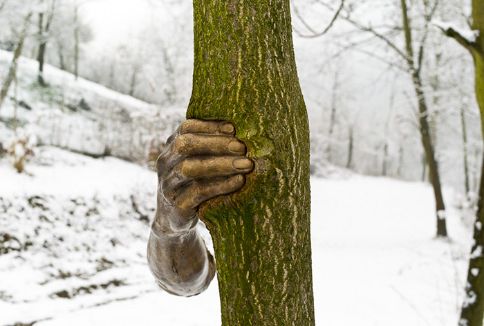 bronze-hand-sculpture-squeezing-tree-giuseppe-penone-1