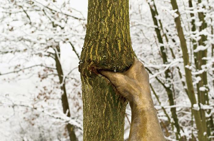 bronze-hand-sculpture-squeezing-tree-giuseppe-penone-3
