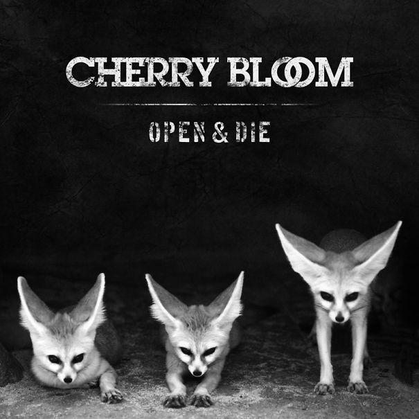 cherrybloom-open-and-die-artwork-big-58b09fb4c13b7.jpg