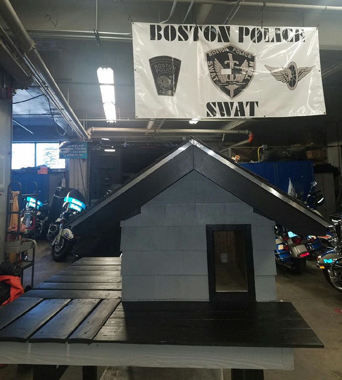 cops-build-stray-swat-cat-condo-3