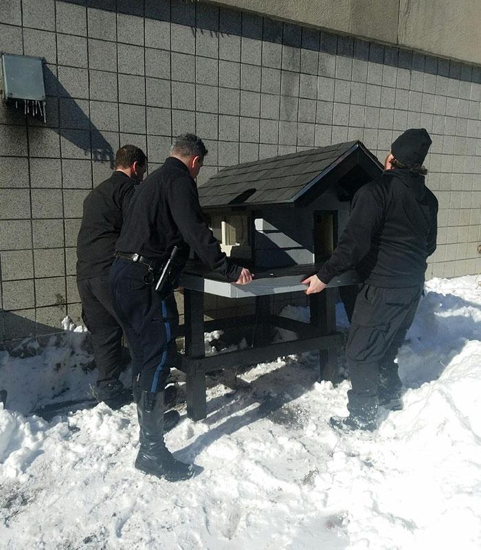 cops-build-stray-swat-cat-condo-4