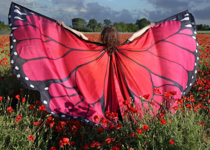 I Hand-Paint Butterfly Wings Paterns On Silk