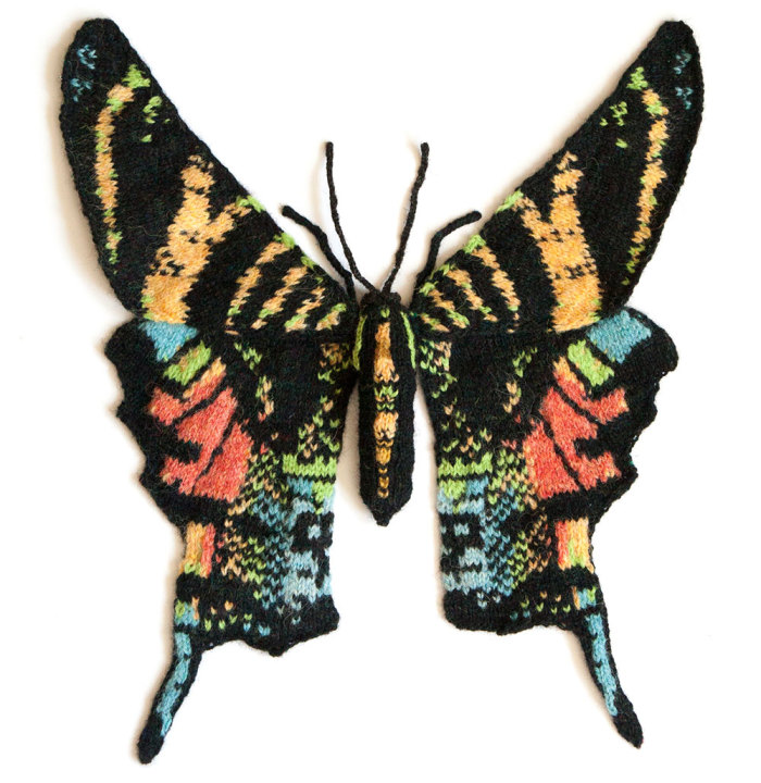 I Knit Different Moths To Reveal Their Spectacular Variety