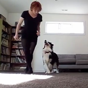 Dog Learns Irish Dance