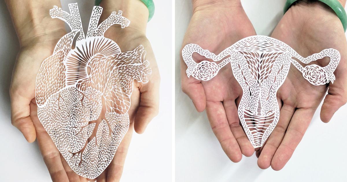 Órganos anatómicos cortados a mano de papel