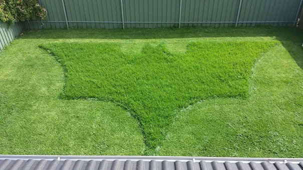 The Bosses Wife Asked Him To Mow The Lawn. This Is What She Got