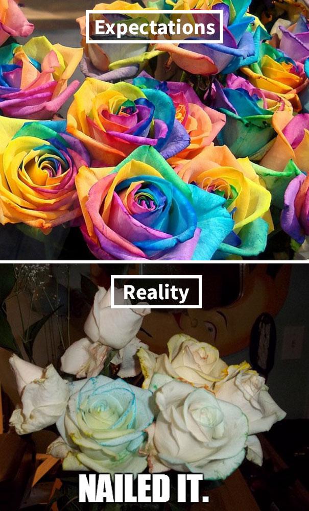 Rainbow Roses Error