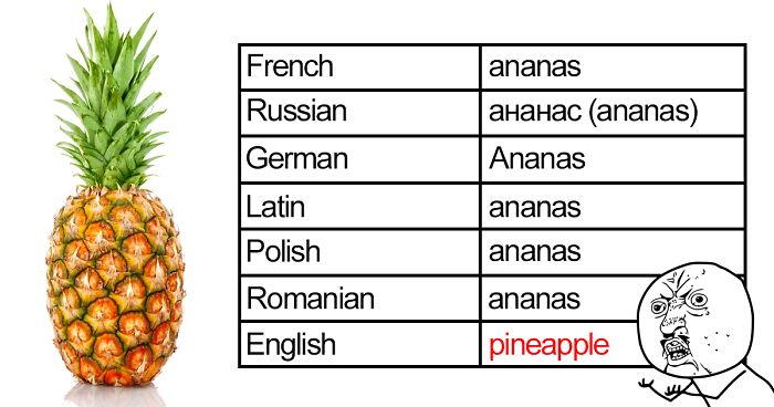 67 Hilarious Reasons Why The English Language Is The Worst ... - photo #38
