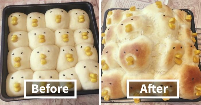 10 Of The Worst Kitchen Fails Ever Bored Panda